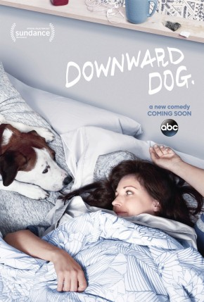 Downward Dog [Series Mania S8] : Confessions canines