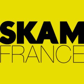 Rencontre avec l'équipe de SKAMFrance